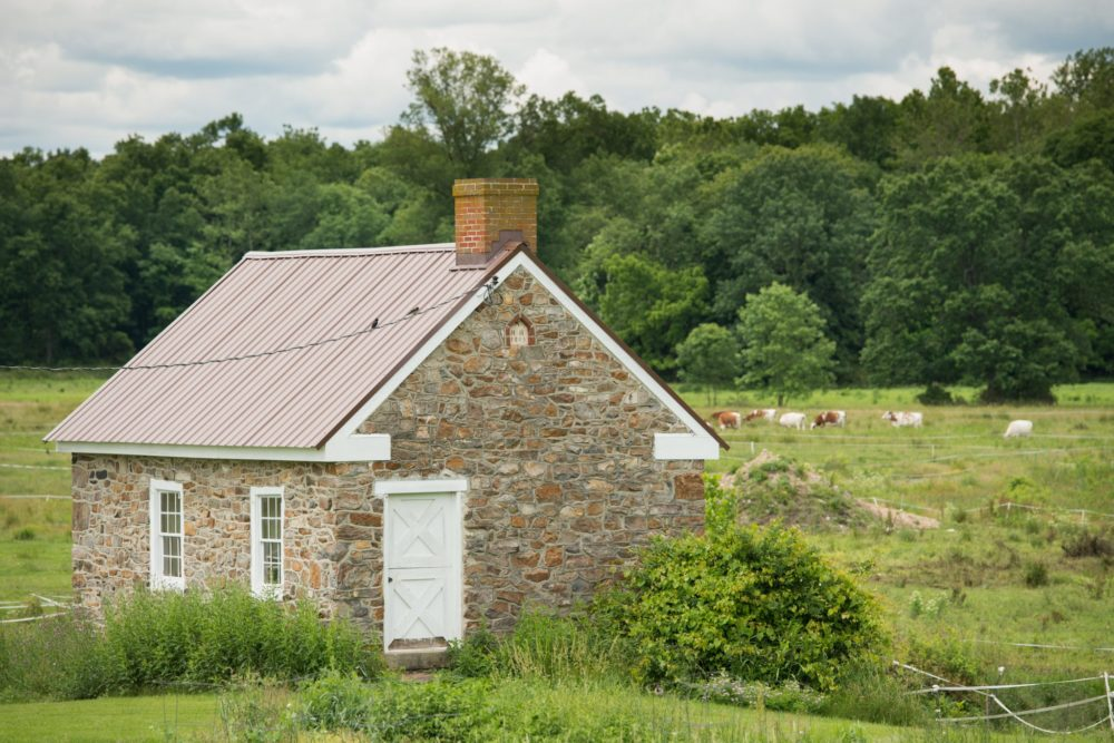 Wholesome Dairy Farms, Yellow House, PA – 20.6 Miles
