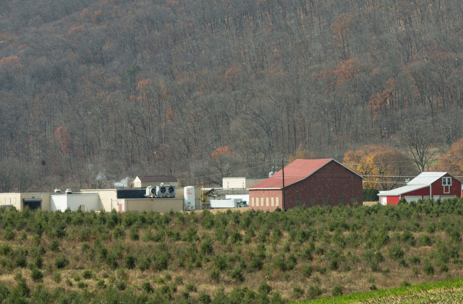 Koch's Turkey Farm, Tamaqua, PA: 62.4 miles